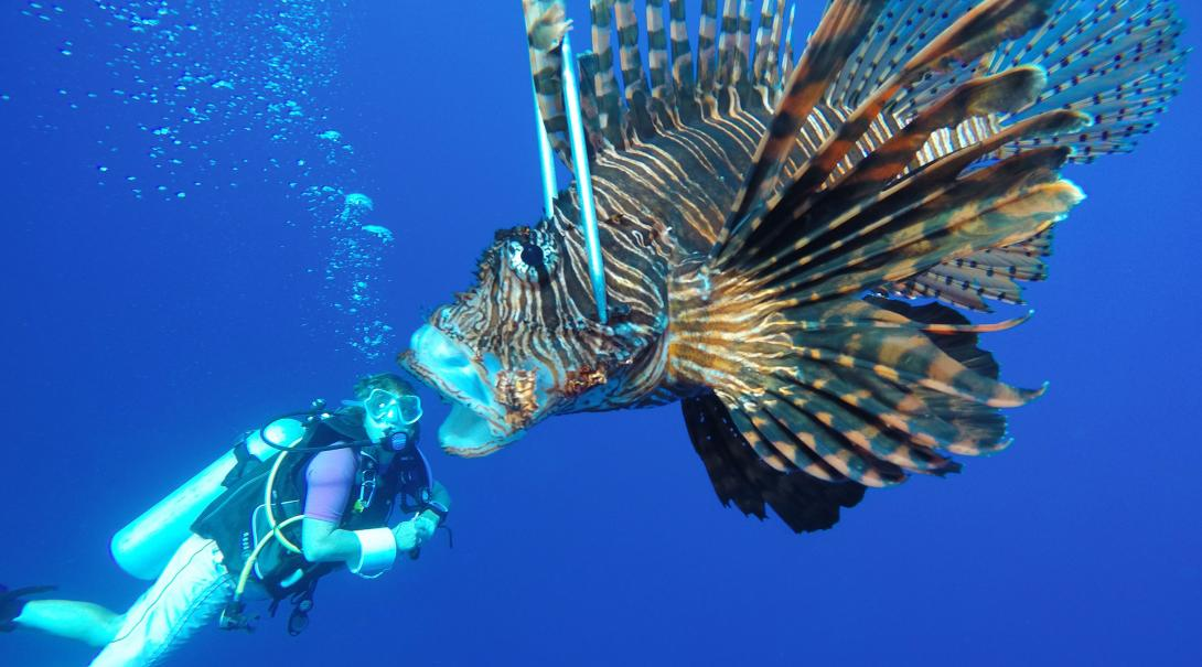 Marine Conservation volunteer goes out on a lionfish hunt during her project in Belize